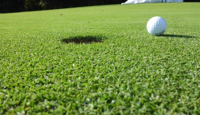 Golf Ball Next to the Hole one Sunday Ultra Dwarf Grass