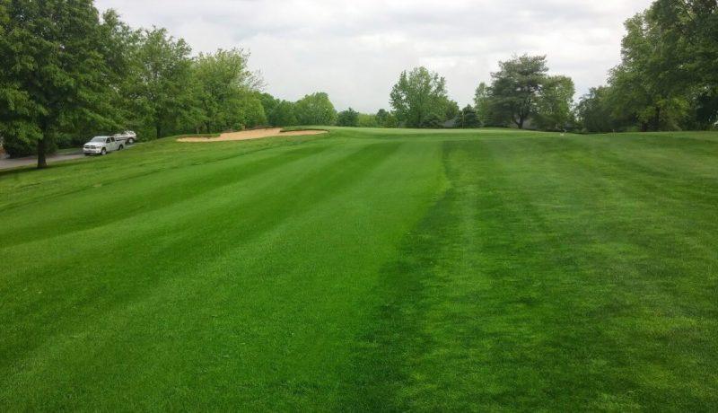 HGT Golf Course Grass